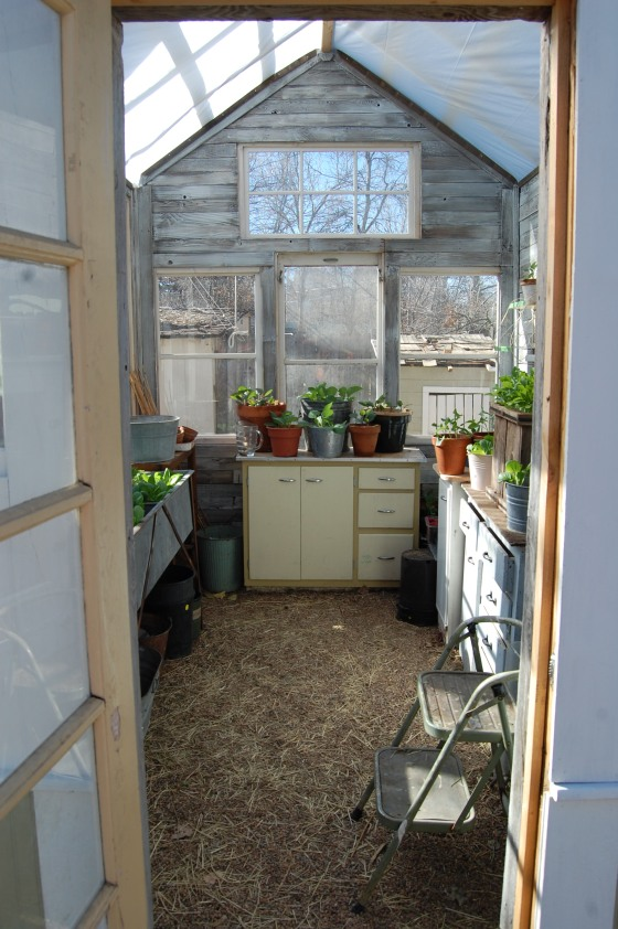 greenhouse march 2012